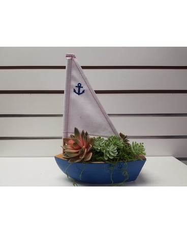 Come Sail Away Succulent Flower Arrangement