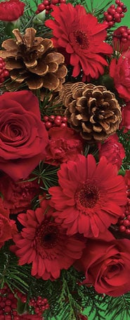 Shop Flowers for Christmas!