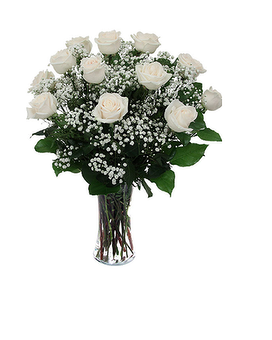 Quick View Dozen White Roses