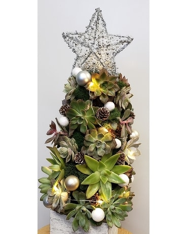 Succulent Christmas Tree Flower Arrangement
