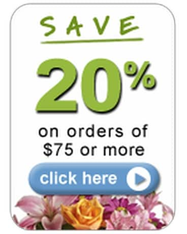 Save 20% Flower Arrangement
