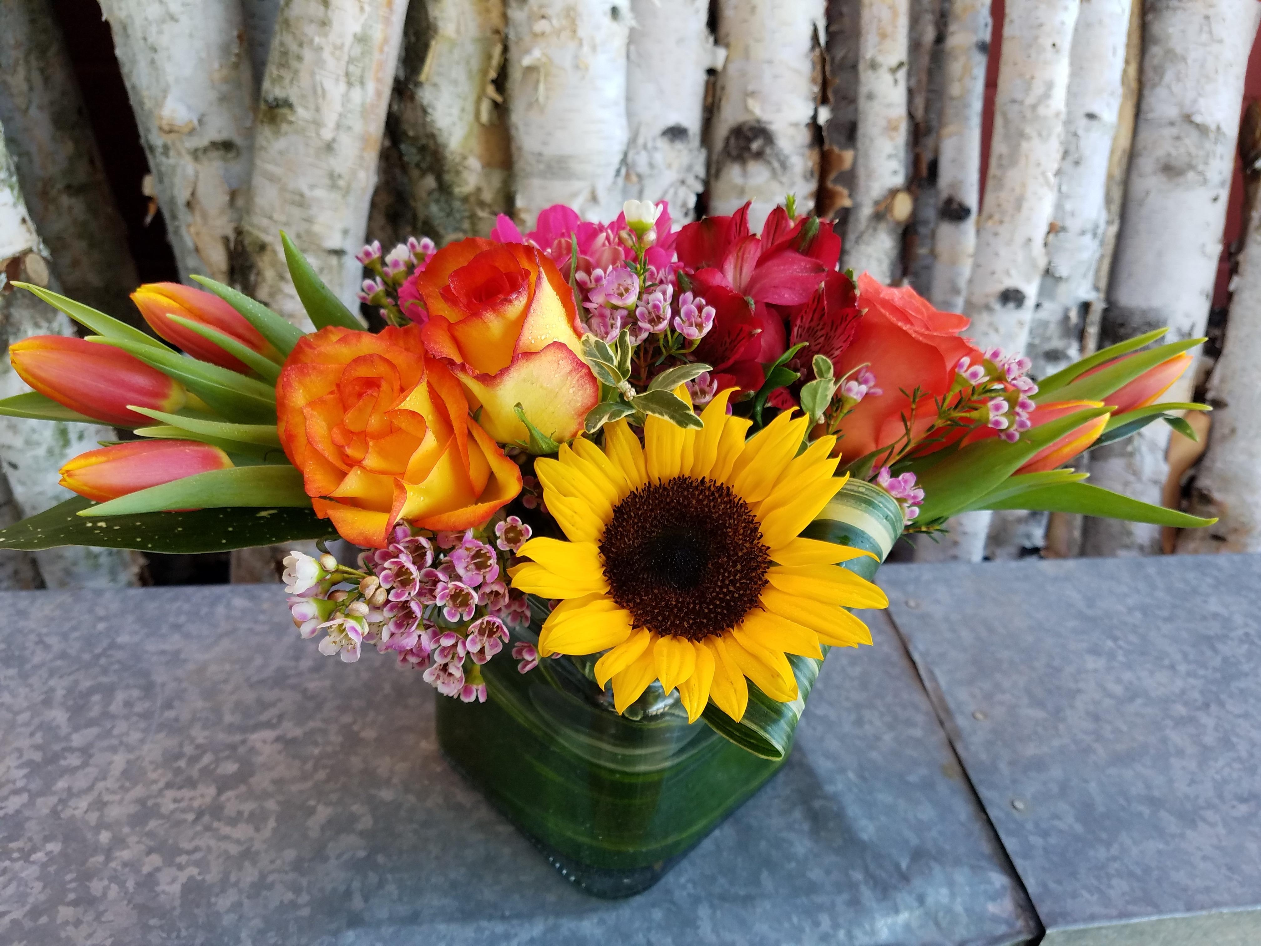 About blumz jrdesigns ferndale mi florist contact information izmirmasajfo