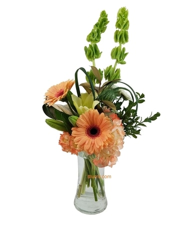 Coral Joy Flower Arrangement
