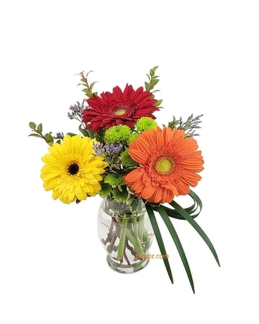 Gerbera Smiles Flower Arrangement