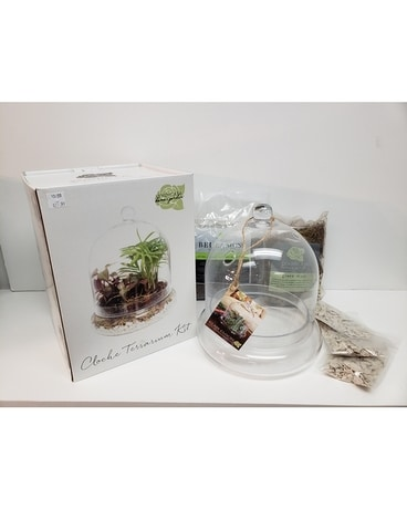 Cloche Terrarium Kit Gifts