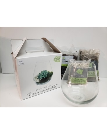 Terrarium Kit #1 Gifts