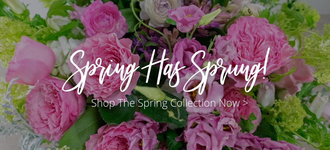 Pine Bluff Florist Flower Delivery By Shepherd Tipton Hurst