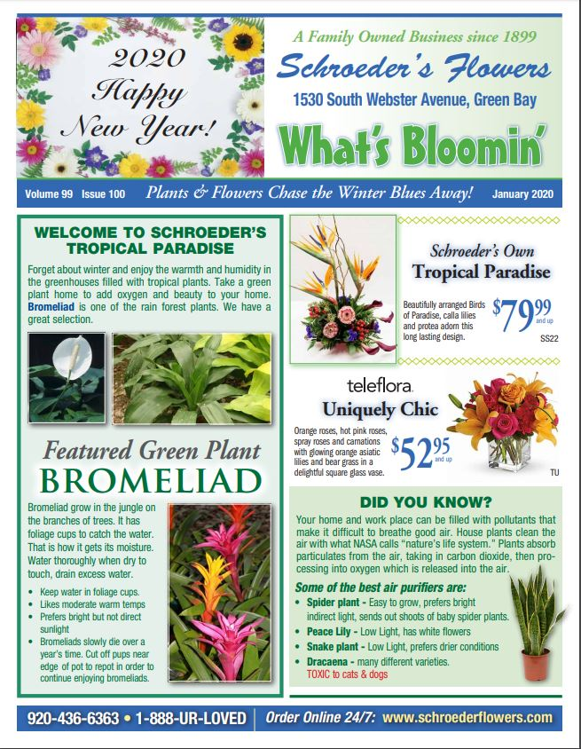 January Newsletter-What's Bloomin'