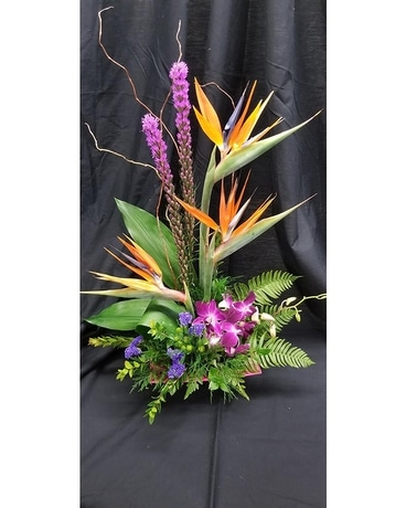 Schroeder's Own Tropical Surprise Flower Arrangement