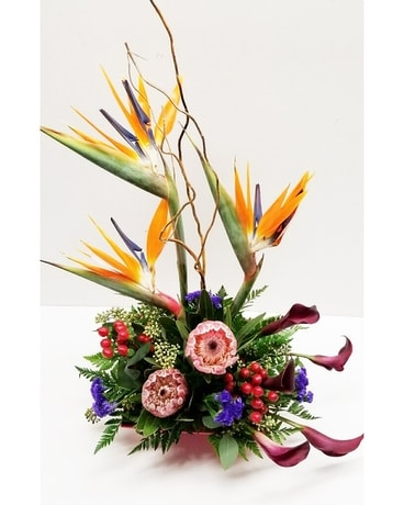 Schroeder's Own Tropical Paradise Flower Arrangement