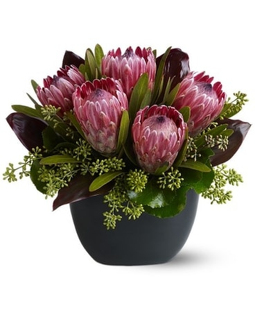 Positively Protea Flower Arrangement