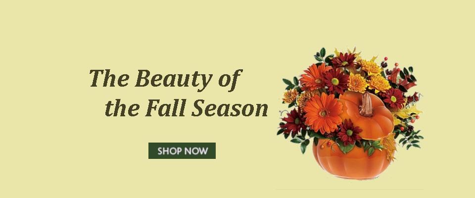 Concord florist flower delivery by jorys flowers mightylinksfo