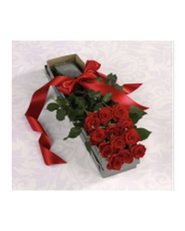 One Dozen Roses- Boxed