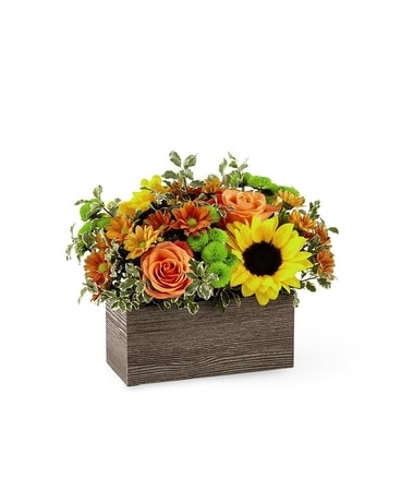 FTD Happy Harvest Garden Flower Arrangement