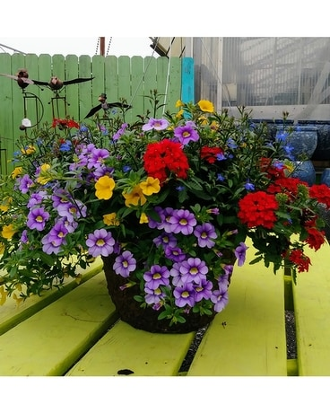 Mixed Hanging Basket Custom product