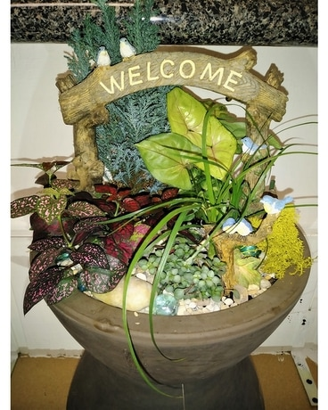 Welcome Fairy Garden Dish Garden Plant