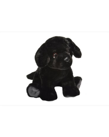 12 Black Labrador - by Reed's Florists Gifts