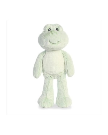 Farley Frog 14 Inch - by Reed's Florists Gifts