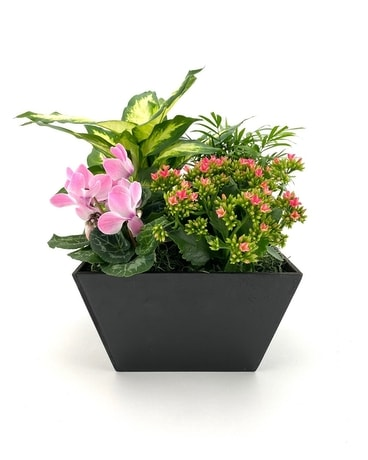 European Planter Flower Arrangement