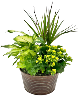 European Garden Flower Arrangement