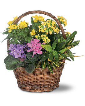 Petite European Basket Flower Arrangement