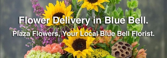 Flower Delivery in Blue Bell, PA