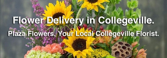 Same Day Flower Delivery in Collegeville Pennsylvania