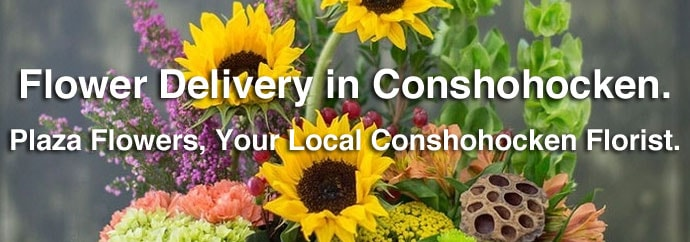 Flower Delivery in Conshohocken, PA