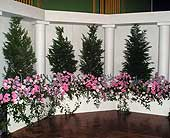 Other Reception Decorations