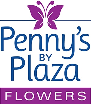 Penny's by Plaza flowers delivery in Norristown Philadelphia