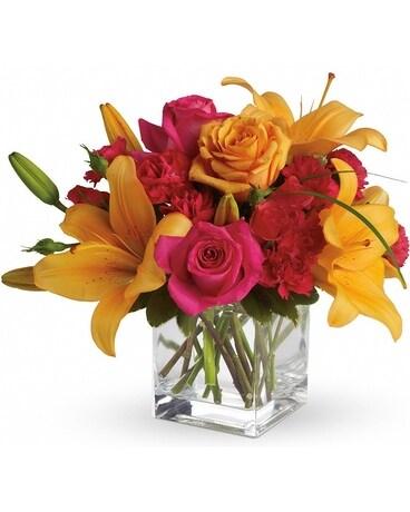 db534429 Send Philly Phavorites | Plaza Flowers