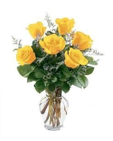 Roses Delivery Norristown Pa Plaza Flowers