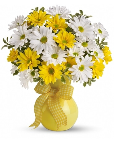 Upsy Daisy Flower Arrangement