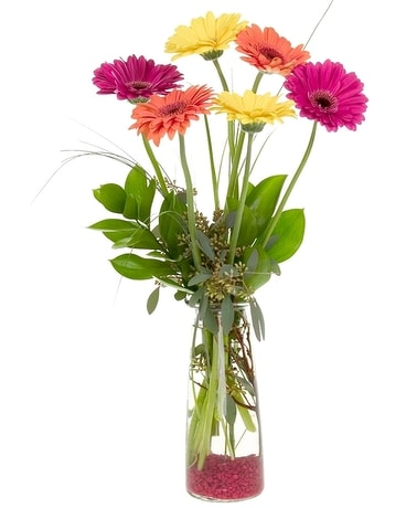 Cheerful Gerbera Memories Flower Arrangement