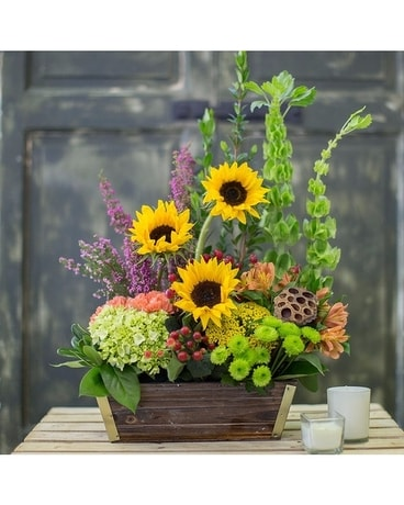 Whimsical Window Box Flower Arrangement