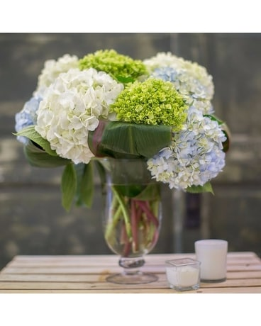 Captivating Hydrangeas Flower Arrangement