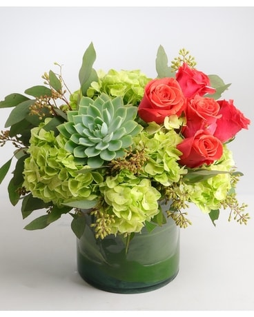Succulent Splash Flower Arrangement