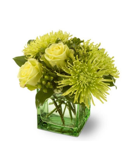 Yellow and green floral arrangements from plaza flowers quick view green light mightylinksfo