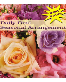 Seasonal Arrangement Daily Deal