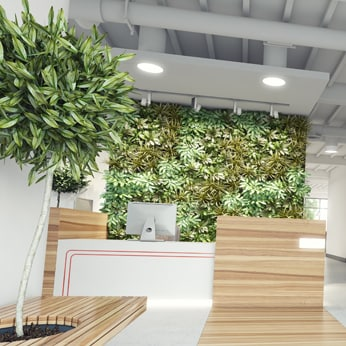 dallas office plants