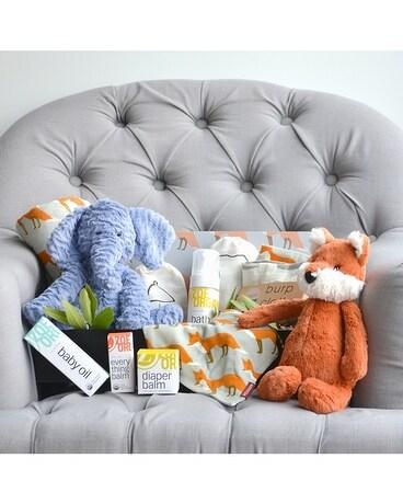 the complete baby boy boutique in dallas tx dr delphinium designs