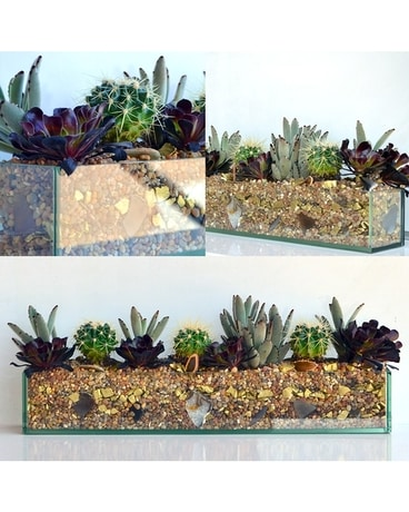 Succulents & Stones Tablescape Flower Arrangement