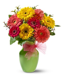 Daisy Dazzle Flower Arrangement